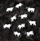 Spur N 10 Kühe